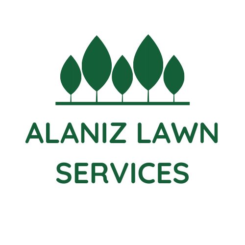 Lawn Care in San Antonio