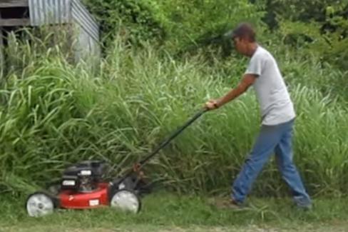 Lawn care pleasanton tx